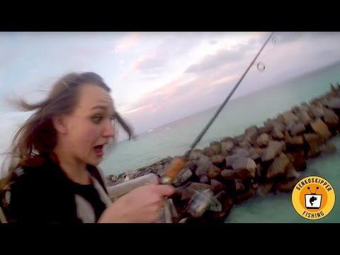 Florida Pier Fishing: Finding Fish In Miami!
