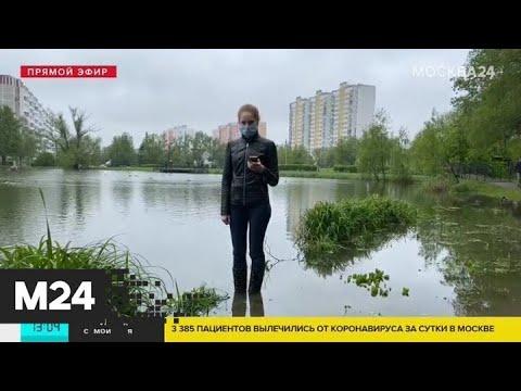 Пруд вышел из берегов в поселке Мосрентген - Москва 24