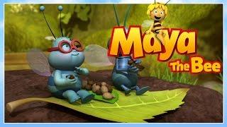 Maya the bee - Episode 77 - The big eat