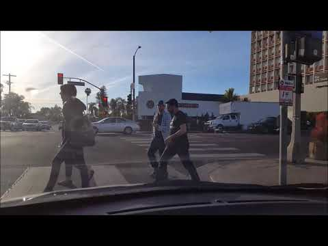 Gilbert goes to Hollywood! What L.A California looks like! 2018