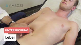 Leber - Klinische Untersuchung - AMBOSS Video