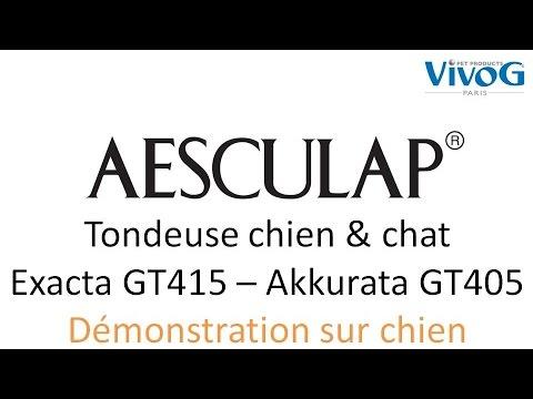 [démo chien] Tondeuse pour chien et chat - Aesculap Exacta Akkurata - tondeuse de finition