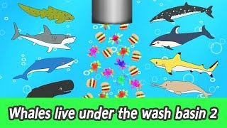 [EN] Whales live under the wash basin 2, kids animals animation, whales adventureㅣCoCosToy