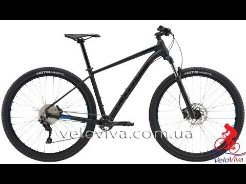 "Горный велосипед Cannondale Trail 5, 29"" (2019). Веломагазин VeloViva"