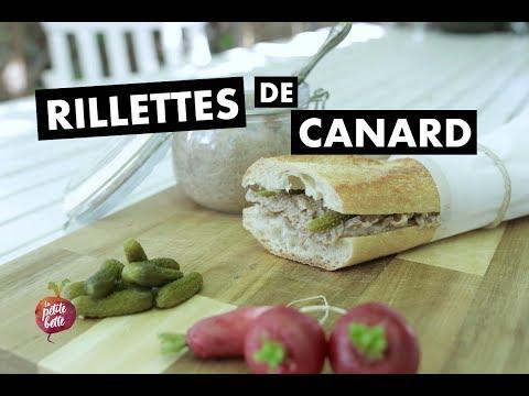 RILLETTES DE CANARD 🦆recette rapide de rillettes la petite bette