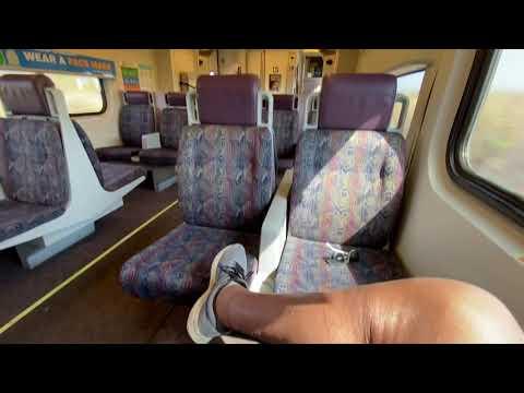 Metrolink # 664 along Pacific Ocean, F125 loco./San Clemente Pier to Oceanside, CA/3:36 pm/7-31-2021
