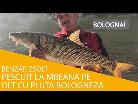 Pescuit la mreana pe Olt cu pluta bologneza