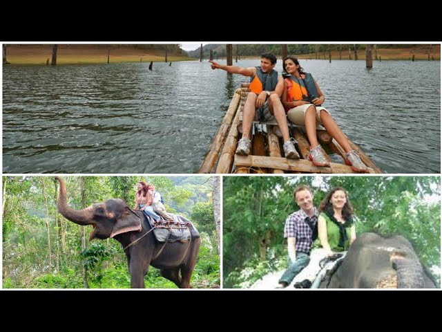 Rengha Holidays - Thekkady Tour package