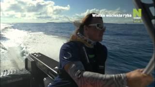 Polsat Viasat Nature - Wielka wściekła ryba - promo