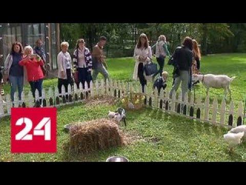 В Архангельском открылся фестиваль фермерской еды