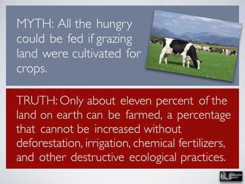 91: The Dangers of Vegan and Vegetarian Diets