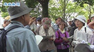 取手市の「巨木・名木めぐりツアー」が人気だ。2010年に始まり、こ...