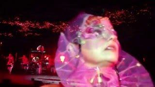 Björk - Black Lake (Vulnicura Live)