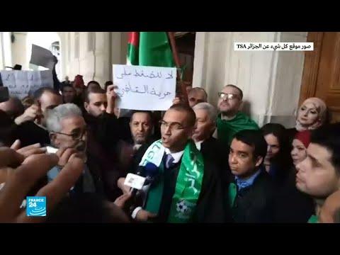 قاض جزائري مخاطبا زملاءه: -لا تخافوا.. الشعب يساندكم-  - نشر قبل 2 ساعة