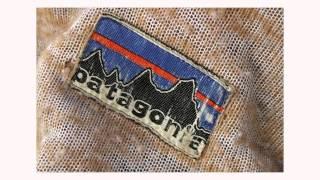 Why Patagonia Works