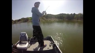 pêche mequinenza avril 2015