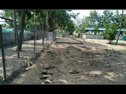 FREE RANGE வெண்பன்றி வளர்ப்பு SRI VARAHI PIG FARM ,TAMILNADU  VIRUDHUNAGAR