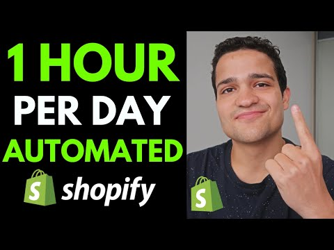 1 Hour Dropshipping: 1 Hour Per Day $10K/Month Fully Automated Shopify Dropshipping Store thumbnail