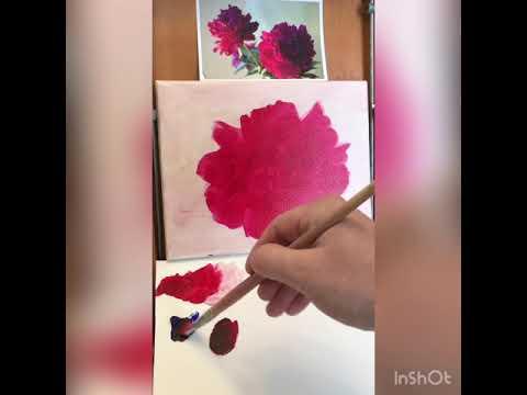 Вопрос: Почему розовые пионы пахнут, а красные нет?