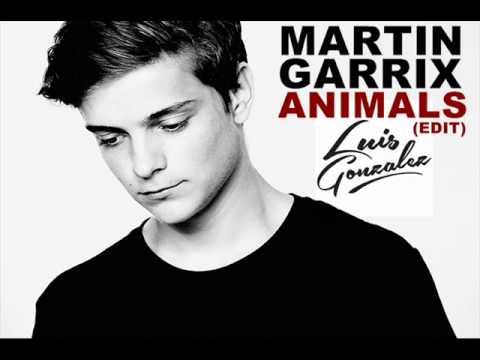 Martin Garrix  Animals Luis Gonzalez Edit
