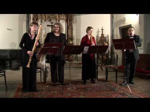 Baroque music festival - Concert in Triest (17.01.2010)