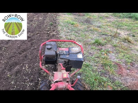 How to Prepare a Vegetable Garden Plot for Planting