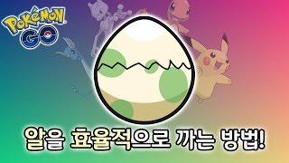 포켓몬 Go! 알을 효율적으로 까는 방법?!ㅋㅋㅋ [ 포켓몬 go : pokemon go] 빅민