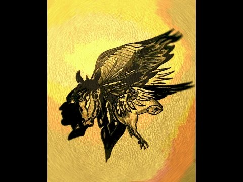 Encounter with the nagual- part1- ENERGETIC DRAINAGE