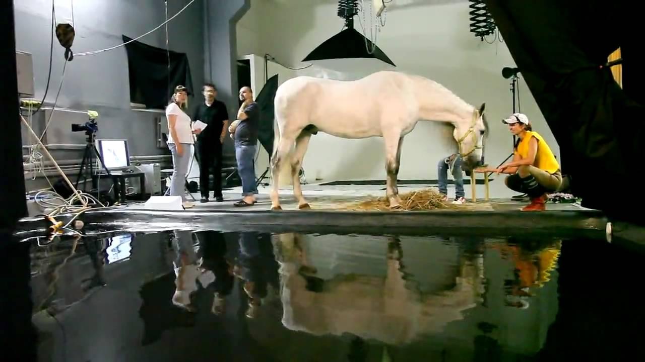 Aquaphotostudio работа моделью в козловка