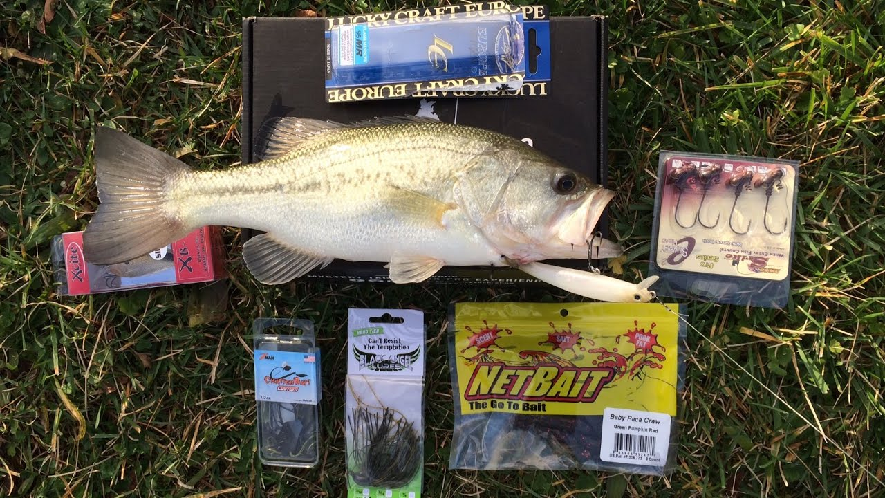 Image gallery mtb fishing for Monthly fishing box