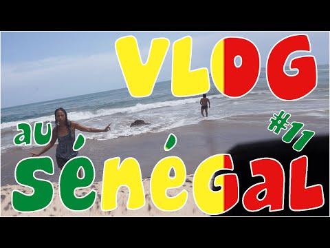 Journée éprouvante, on se fait agresser à la machette... - Vlog au Sénégal #11