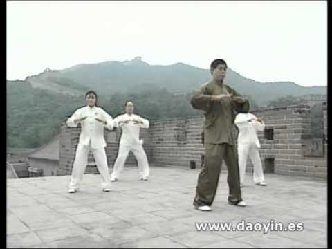 Qigong DA WU (The great dance of qigong)