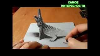 ПАРЕНЬ НАРИСОВАЛ 3D КРОКОДИЛА(ЭКСКЛЮЗИВ)(Парень на бумаге нарисовал крокодила в формате 3 D!чудесаНе пропустите самое интересное http://www.youtube.com/channel/UCu6Y..., 2014-12-14T12:59:31.000Z)