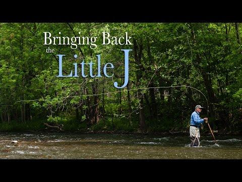 Restoration Spotlight: The Little Juniata