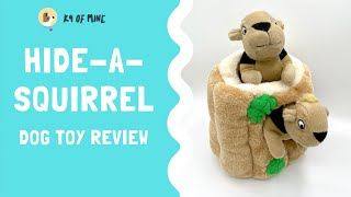 Hide-A-Squirrel Review: Is This Soft Puzzle Toy Safe With Your Dog?