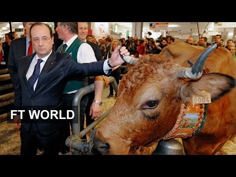 Farming: France takes bull by horns