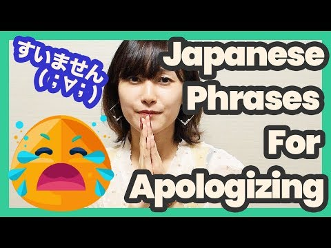 I'm Sorry ( ;∀;) Expression Of Various Apologies In Japanese   Japanese Language Lesson