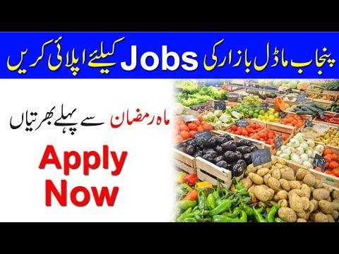 Punjab Model Bazaar New Jobs 2019  ll By Uptodate jobs