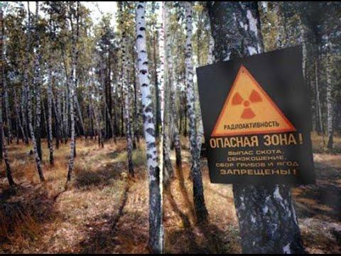 Последствия поездки в Чернобыль/Chernobyl: Exclusion Zone