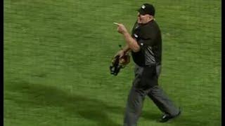 MLB Fan Ejections