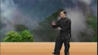 Repeat youtube video 陳家十八式太極拳