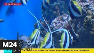 Сергей Собянин пригласил жителей столицы на юбилей \