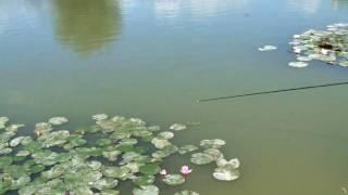 Sams Lake getaway