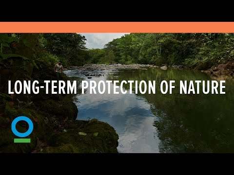 Global Conservation Fund: Investing in the Long-Term Protection of Nature