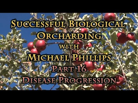 Successful Biological Orcharding with Michael Phillips Part 16 Disease Progression