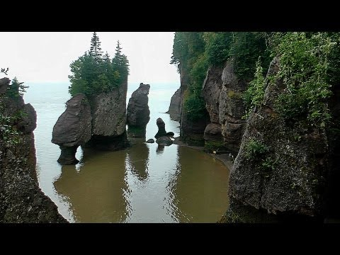 Hopewell Rocks, Bay