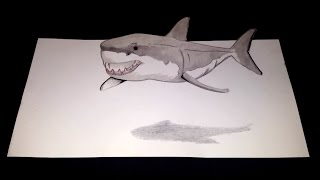 How To Draw A 3D Shark Illusion