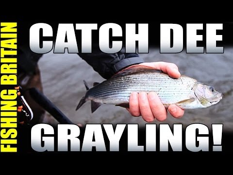 Dee Grayling, Cliff Diving and Pike fishing - Fishing Britain episode 3