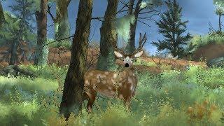 El bosque despierta animación (AE,PS,Blender,Maya)
