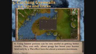 Most Detailed Grenwall Guide Runescape -1791k gp/h & 98k exp-by Idk Whats Rc